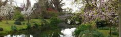 Immagine di http://giardinodininfa.it/images/giardini-di-ninfa.png.