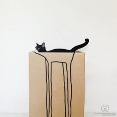 """my long-Legged cat named Bam""  in a cardboard box with a long legs drawn on the side"