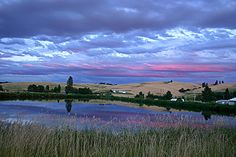 The Palouse in Moscow, Idaho.  The most beautiful place I ever lived