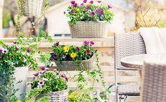 Planter på balkongen og terrassen – slik lykkes du