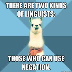 Linguist llama