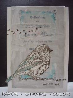 Magenta: Book bird... / Livre d'oiseau