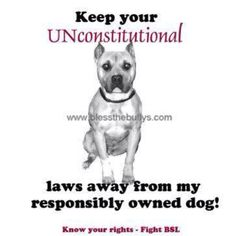 AMEN! My pit is more trained then any dog I've met. He wouldn't hurt anything!