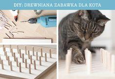 Zbuduj zabawkę dla kota w formie maty z kołkami