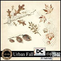 Urban Fall leaves