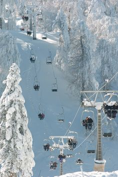 Kartepe in winter. (Kartepe is a town and district of Kocaeli Province) Turkey.
