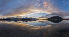 Lyngen. Gull. © Jan R. Olsen    Lyngen. Troms. Norway.