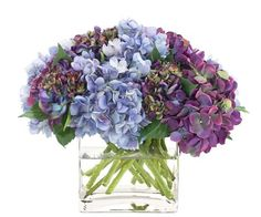 "Natural Decorations, Inc. - Blue & Purple Hydrangea Watergarden in Large Glass Cube.  Presented by Patty Day at to Melanie Turner, in honor of her inclusion in this year's 10 New Trads - Traditional Home's annual, signature ""hot list"" of designers to watch!"