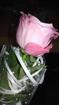 #rose #love #flower #spring #happy