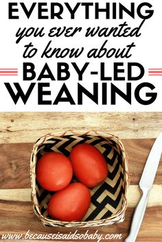 How to Get Started with Baby-Led Weaning. Everything you need to know to get started and have a successful BLW experience!