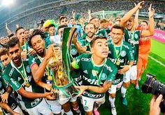 Blog Esportivo do Suíço:  Palmeiras bate a Chape, é campeão brasileiro e acaba com jejum de 22 anos