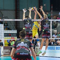 """""""Le Stampe di Alice"""" sponsor della Sir Safety Volley Perugia - Serie A1 Campionato Italiano"""