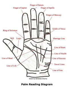 Learn basics of palmistry and how the chart is interpreted with this easy to understand palm-reading guide which contains information to help interpret the secrets that lie hidden within the palms of your hands. Wiccan, Magick, Witchcraft, Palm Reading Charts, Palm Reading Lines, Palm Lines, Pseudo Science, Signo Libra, Book Of Shadows