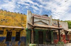 Na data de 20 de maio de 2015, Jennifer Fickley-Baker, Gerente de Mídias Sociais, informou no blog oficial da Disney que o Harambe Market, uma nova área onde os convidados poderão...