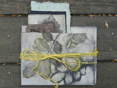 Elizabeth Bunsen Leaf Song bundles