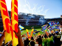 Photo Contest, Cape Town, Rugby, Geo, South Africa, Fair Grounds, September, Travel, Facebook