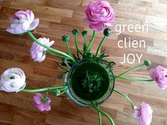 Komkommer, citroen, peer, krulsla, paksoi, gember, avocado 💚 Avocado, Joy, Green, Plants, Lawyer, Glee, Being Happy, Plant, Planets