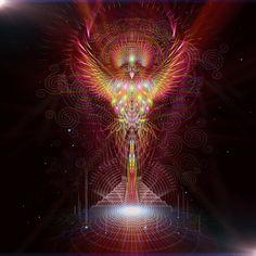 quetzal vision Sam Farrand - Gifyu