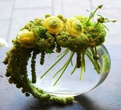 Floral arrangement in yellow and green on a glass bowl Contemporary Flower Arrangements, White Flower Arrangements, Flower Centerpieces, Flower Decorations, Ikebana, Fresh Flowers, White Flowers, Beautiful Flowers, Colorful Flowers