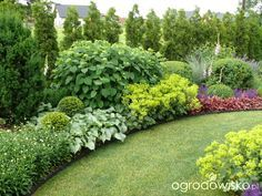 A small but large garden;) page 80 garden forum garden Privacy Landscaping, Modern Landscaping, Front Yard Landscaping, Inexpensive Landscaping, Landscaping Ideas, Arborvitae Landscaping, Landscaping Contractors, Landscaping Software, Garden Types