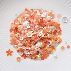 Ruby Grapefruit | LC