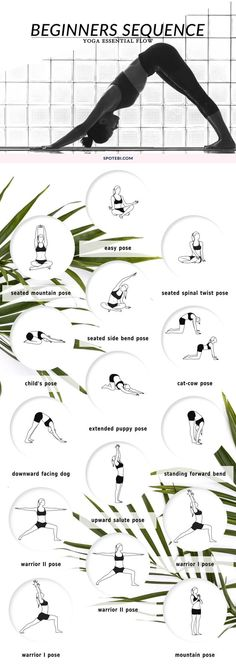 Are you new to yoga? This beginners yoga sequence is perfect if you're looking to achieve more flexibility and get in touch with your spiritual side. Stretch your body, practice mindfulness and let go of emotional baggage. http://www.spotebi.com/yoga-sequ: