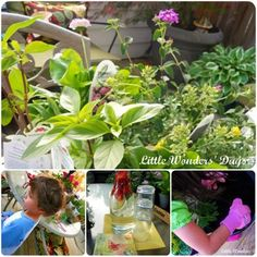 Sensory Gardening with Kids -Engage the children's senses and get their hands dirty planting their very own sensory garden.