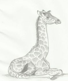 23 ideas for baby animals drawings giraffe Giraffe Drawing, Baby Animal Drawings, Giraffe Painting, Giraffe Art, Animal Sketches, Pencil Drawings, Art Drawings, Abstract Animal Art, Giraffe Species
