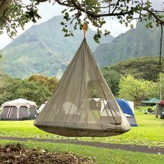 Arlmont & Co. Raelynn Double Spreader Bar Hammock & Reviews | Wayfair Outdoor Hammock Bed, Cute Girls Bedrooms, Campfire Fun, Kerala House Design, Canopy Tent, Tents, Backyard Makeover, Diy Pergola, Pergola Ideas