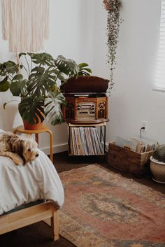How to Instantly Spruce up Your Room with Revival Rugs!