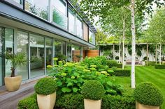 A tightly knit framework of clipped box, bay trees and silver birch reflects the grid of the interior, with a simple wood-framed loggia at one end. Landscape Design, Garden Design, Landscape Architecture, Contemporary Garden, Garden Modern, Modern Backyard, Low Maintenance Garden, Private Garden, Green Garden
