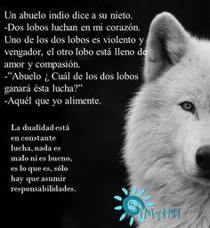 Dos lobos...violencia o compasión...amor u odio...