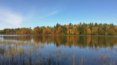 Biking the Fish Creek loop in Fish Creek Campground and around the pond in the Rollins Pond Campground is a great way to spend a fall day! Fish Creek Campground, Tupper Lake, Adirondack Park, Changing Leaves, Bike Rider, Get Outside, Outdoor Activities, Biking, Pond