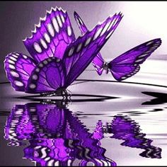Just as beautiful as the meaning of butterfly. The butterfly- The butterfly represents the resurrection into a glorious new life free of material restrictions. R.I.P Aunt Patty <3