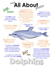 My All About Sharks Book - Ocean Animal Unit Study from Courtney McKerley on TeachersNotebook.com (9 pages)