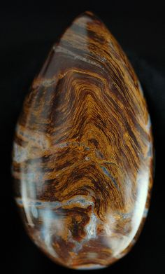 PETRIFIED WOOD: Addictions/Alcoholism/Compulsiveness, AIDS and Other Immune Disorders, Arthritis/Bones/Joints, Calming/Soothing, Cancer, Happiness, Healing  Health(General), Incontinence, Paralysis, Past Life, Protection(General), Stability, Success(Business/Career), Wisdom, Worries
