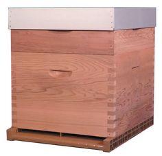 "Ruche en cèdre naturel ""Red Cedar"" Dadant 10 cadres - Toit plat | Thomas apiculture"