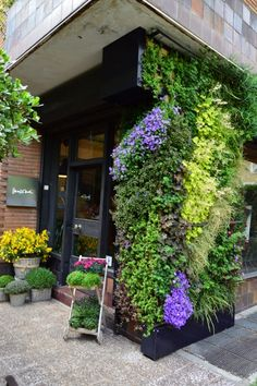 43 Beautiful Diy Examples How To Make Lovely Vertical Garden Vertical Planting, Vertical Garden Wall, Vertical Farming, Vertikal Garden, Island Moos, Green Facade, Garden Living, Garden Pictures, Plant Wall