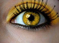 Pretty Yellow Eyes