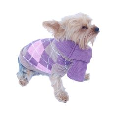 This is a BasAcc apparel for pet dog and cat. Knit argyle sweater with removable scarf.