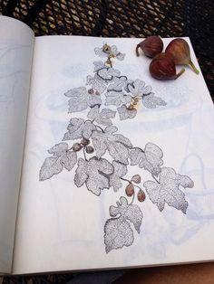 fig tree tattoo designs - Google Search