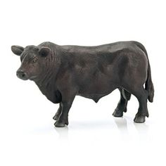 Black Angus Bull #13766 - Don't forget the Black Angus Cow and Calf