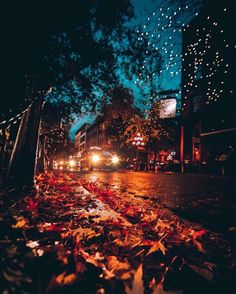 fall scenery Uploaded by a n g h e l l i c. Find images and videos about autumn, fall and night on We Heart It - the app to get lost in what you love. Autumn Cozy, Autumn Fall, Winter, Autumn Leaves, Late Autumn, Autumn Scenery, Autumn Aesthetic, All Nature, Fall Wallpaper