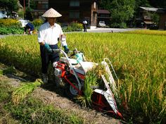 The right rice harvester for the job. In Japan with www.toursgallery.com