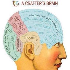 A Crafter's Brain! For me just erase chocolate and add the space to housework! #crafter #blogger #craftstodo #notenoughtime #instafun