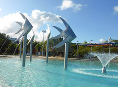 Explore the City of Cairns Itself