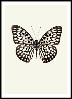 Härlig och trendig tavla med fjäril.