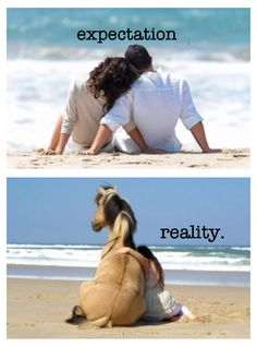 "Haha story of my life. All my friends are in relationships and in love. Well, I'm over here like ""This is a nice horse... I like this horse..."""