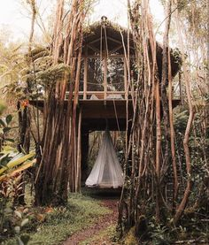 Jungle treehouse hideaway (i.it) submitted by notateselecta to /r/CozyPlaces 0 comments original - Architecture and Home Decor - Buildings - Bedrooms - Bathrooms - Kitchen And Living Room Interior Design Decorating Ideas - Lost In The Woods, Cabins In The Woods, Escape Room, Tulum, Architecture Design, Purpose Of Travel, Hawaii, Destinations, Villa