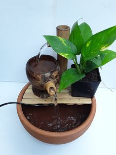 Water Fountain Pumps, Bamboo Fountain, Indoor Fountain, Diy Projects Cement, Bamboo Shop, Coconut Shell Crafts, Cactus E Suculentas, Mini Pond, Diy Table Top